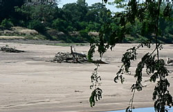 Limpopo River Bed